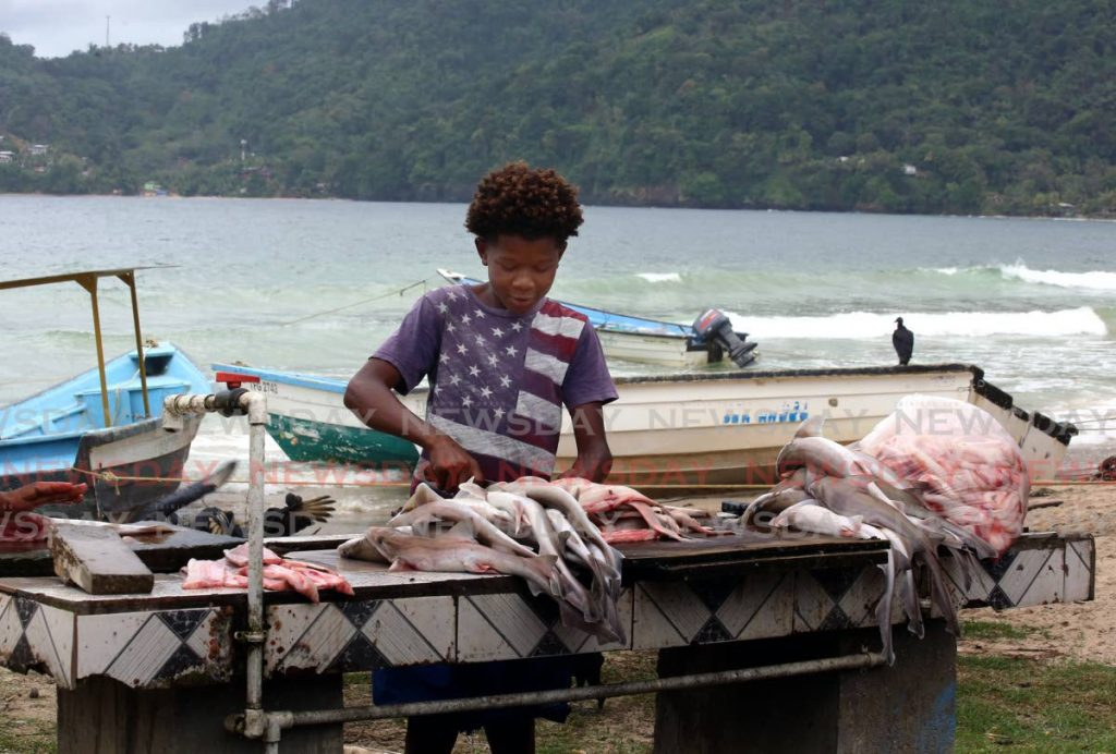 A young fish vendor cleans a catch at Maracas Bay. - Photo by Sureash Cholai