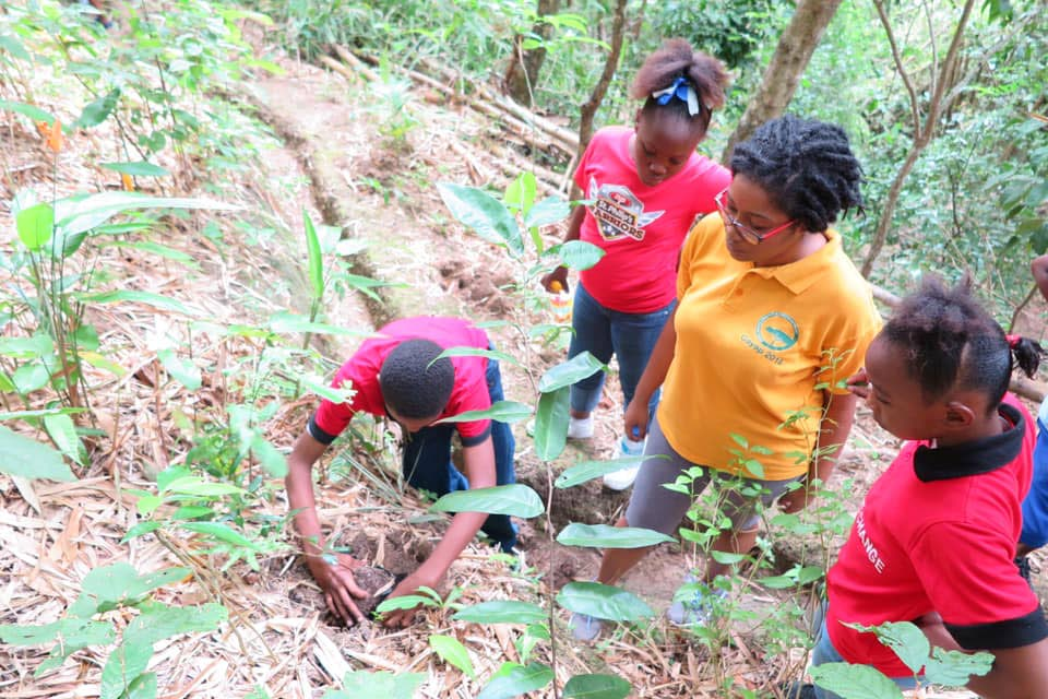 Students help with reforestation in Trinidad.   Photo courtesy Fondes Amandes Community Reforestation Project