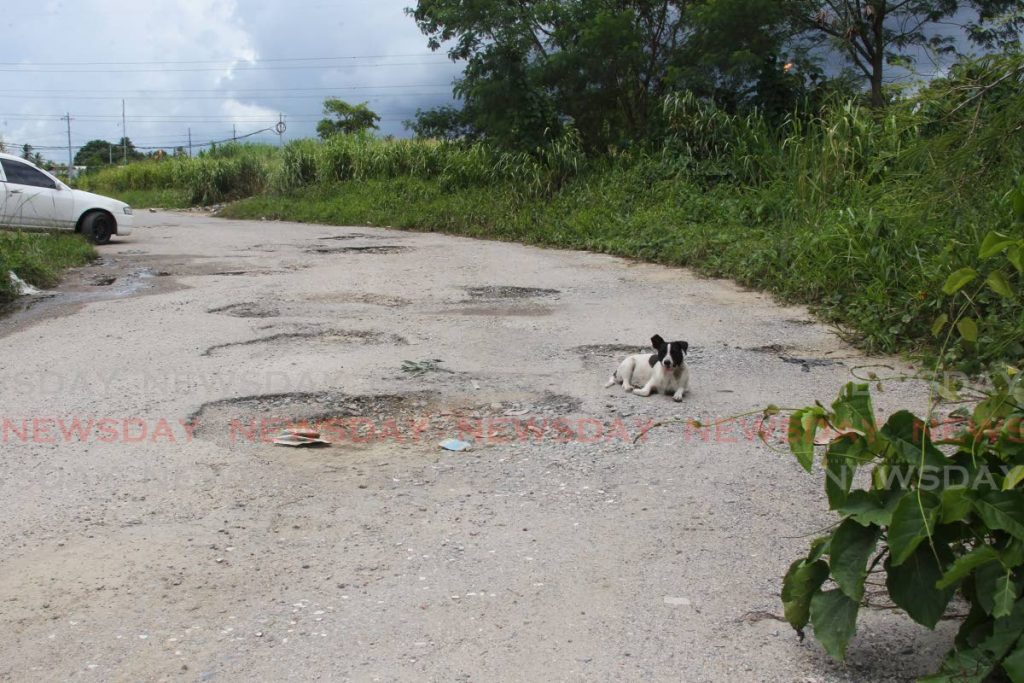 The pothole-filled road leading to the Carli Bay fishing depot in Couva. - Photo by Lincoln Holder