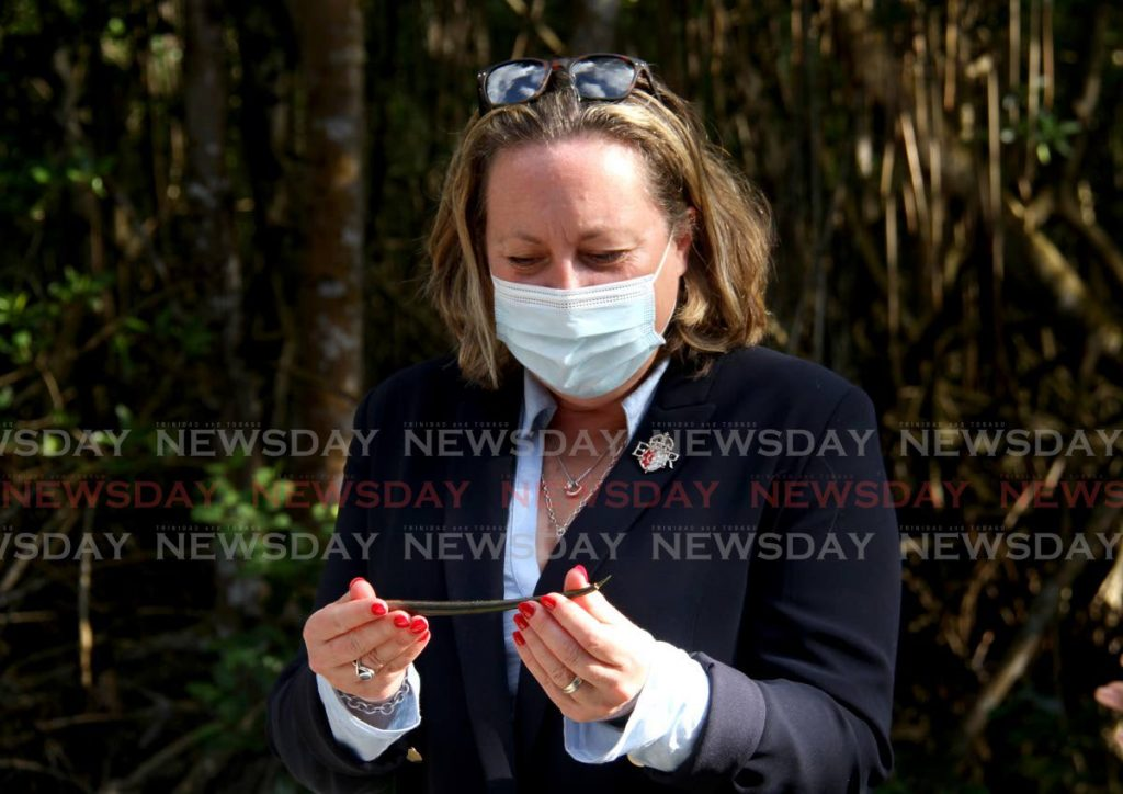 UK Minister of State for Business, Energy and Clean Growth Anne-Marie Trevelyan, admires a mangrove seed at the Caroni Swamp after she viewed the UK supported climate mitigation programming in action. - Photo by Ayanna Kinsale