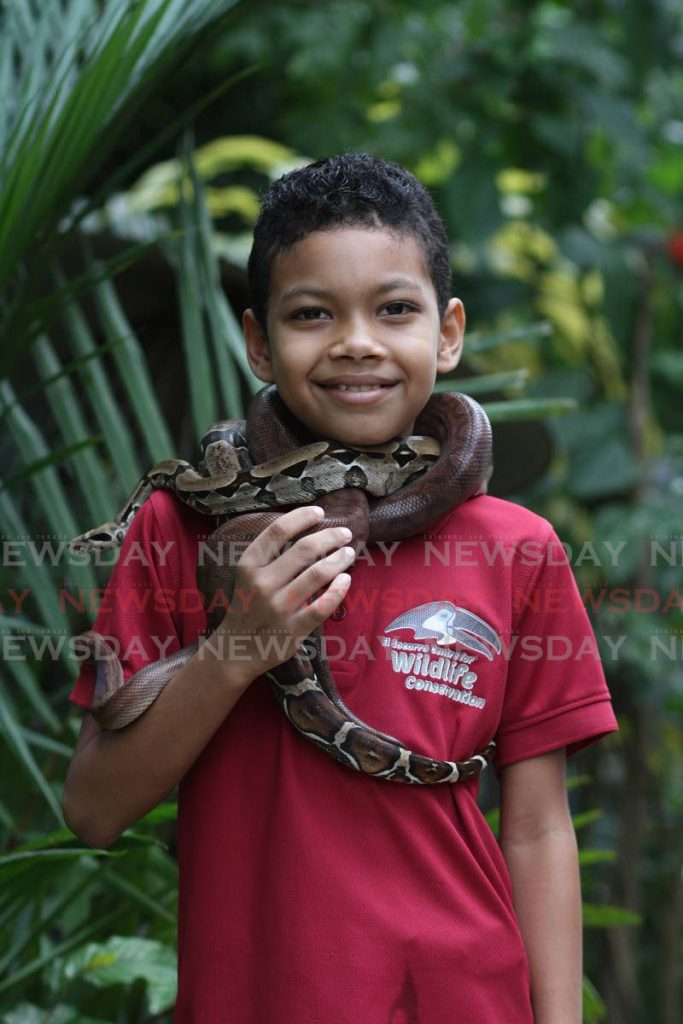 Liam Mohammed says people should not be afraid of snakes. They only bite if people try to harm them, he said. - Photo by Marvin Hamilton
